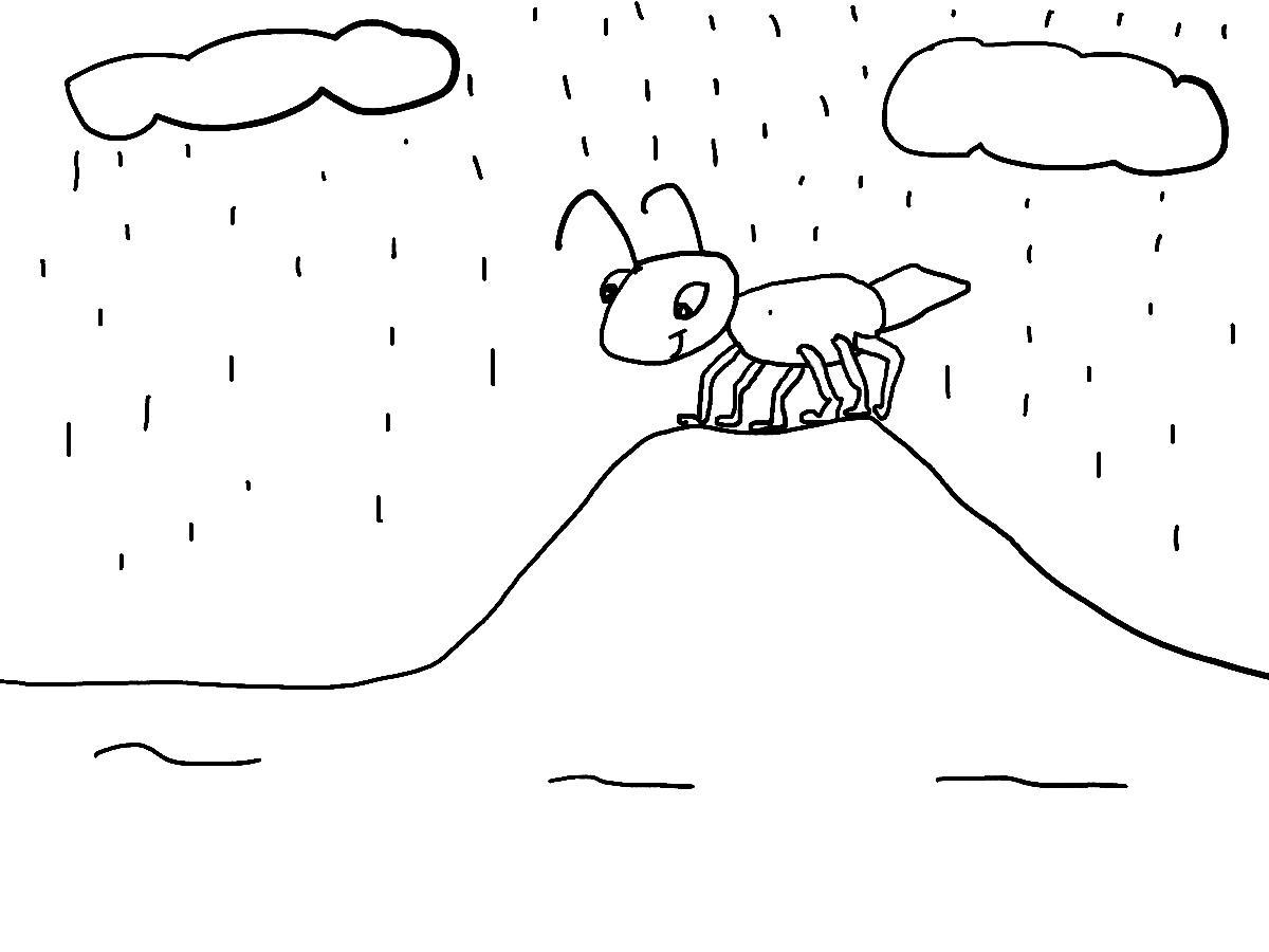 COLOREA TUS DIBUJOS: Dibujo de hormiga bajo la lluvia para colorera