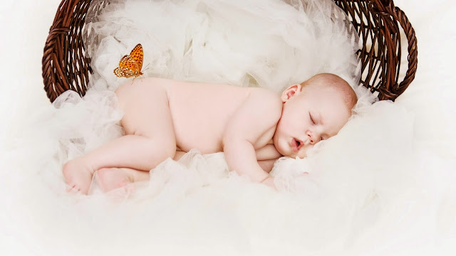 22222-Baby Basket Sleep Toddler Butterfly HD Wallpaperz