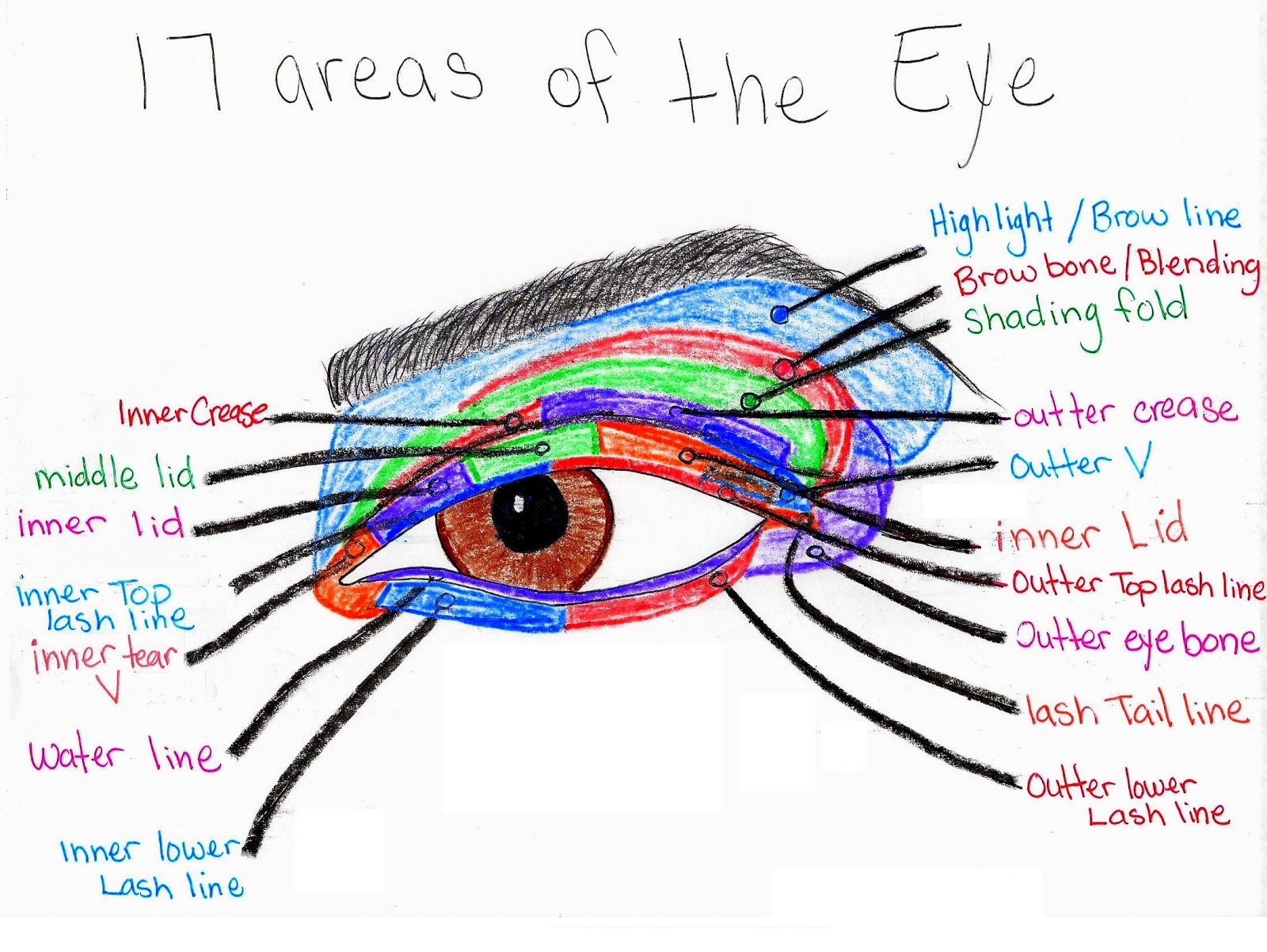 Here Is The Eye Makeup Diagram I Use For Myself Pinterest The World S  Catalog Of
