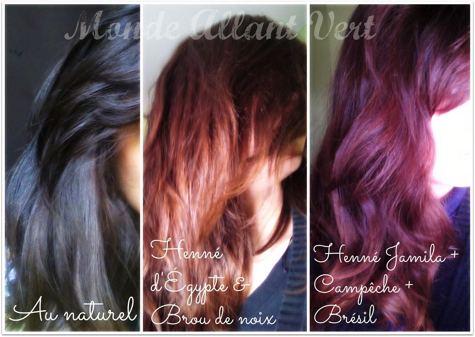 les bienfaits du henn pour colorer naturellement les cheveux - Coloration Cheveux Bordeau