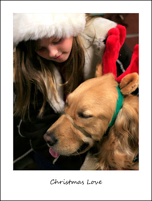 girl in Santa hat with Golden wearing antlers