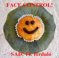 http://konyhalal.blogspot.hu/2013/04/sad-14-fordulo-osszefoglalo-face-control.html