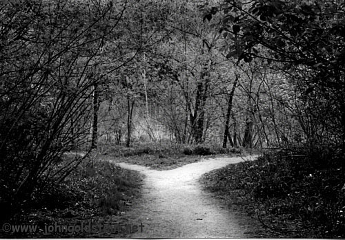 choosing between two paths in the road not taken by robert frost Blog cart the road not taken - robert frost it reminds us what's important in the poem – the concept of choosing between two different paths.