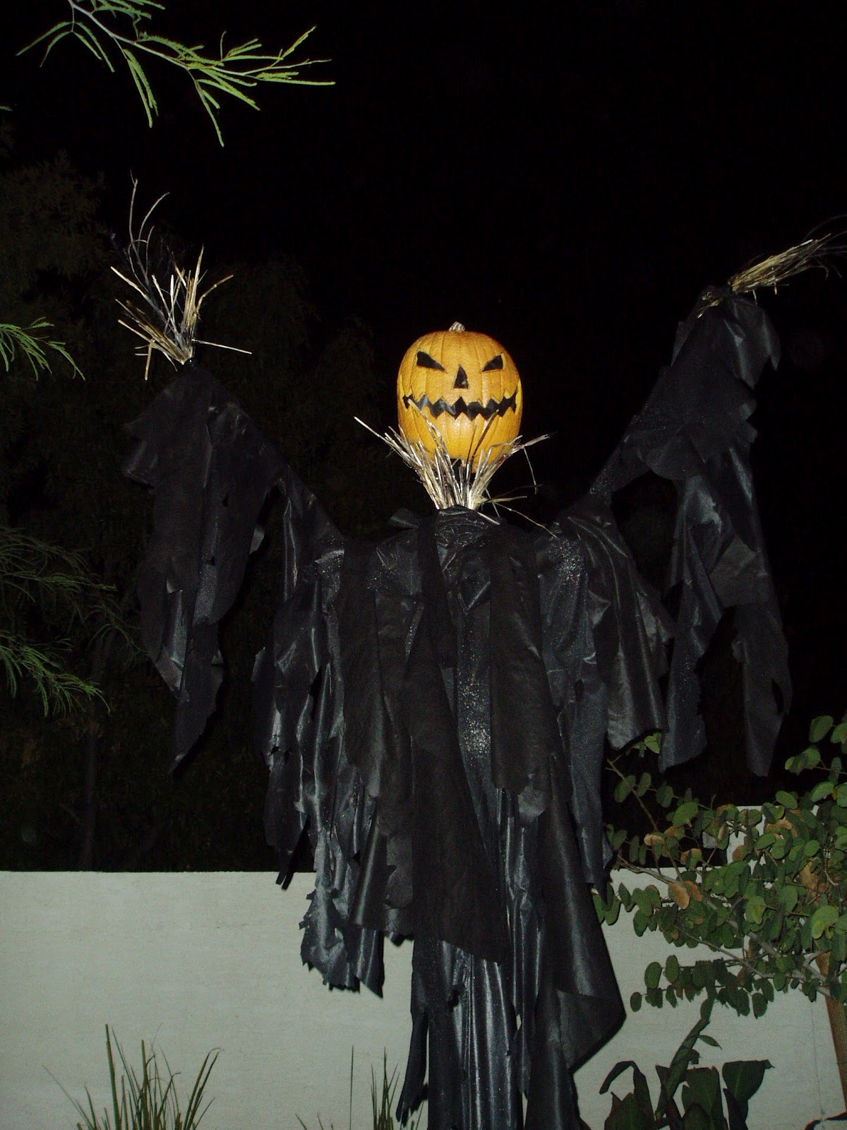 my guy - Halloween Scare Crow