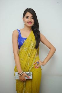 Ruksha Meer sizzling in saree 021.JPG