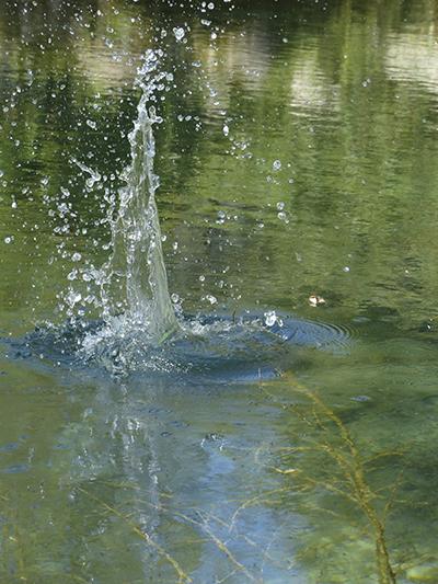 Eau et goutte d'eau. Mouvement figé en photographie