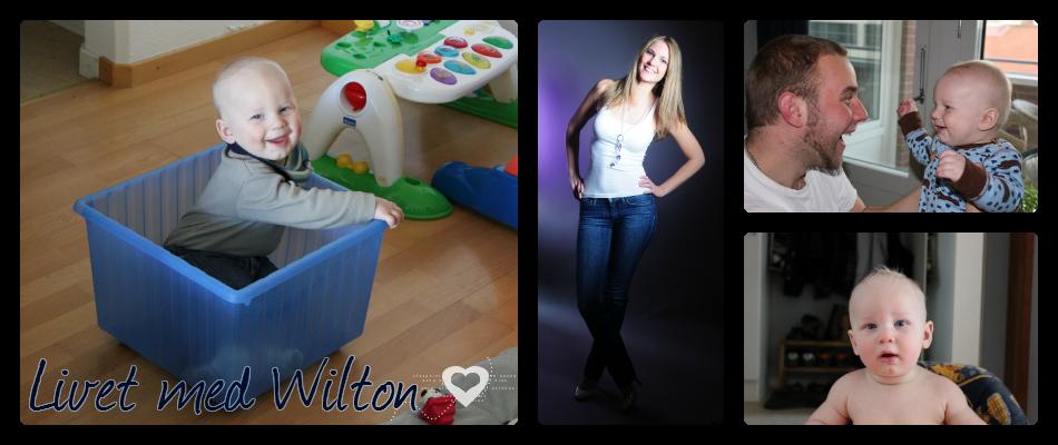 Livet med Wilton