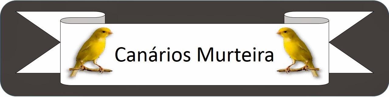 Canários Murteira