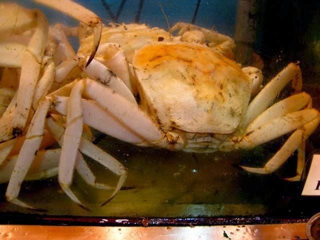 Райский остров Ламма (Гонконг) и Rainbow Seafood Restaurant