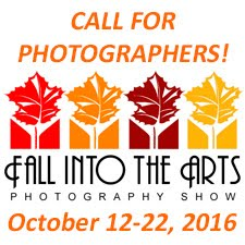 Fall Into the Arts Photography Show