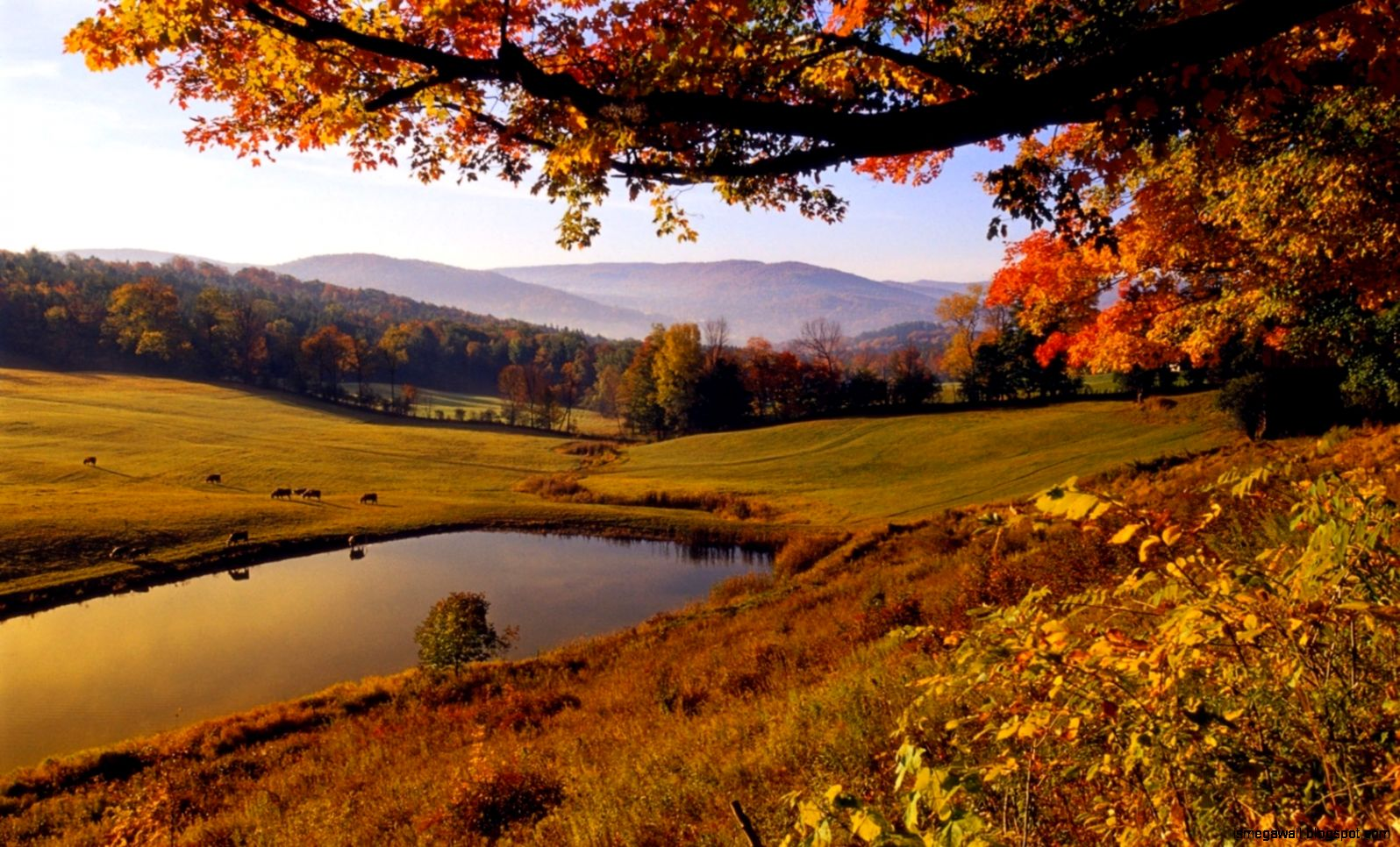 Autumn Desktop Wallpaper Amazing Wallpapers