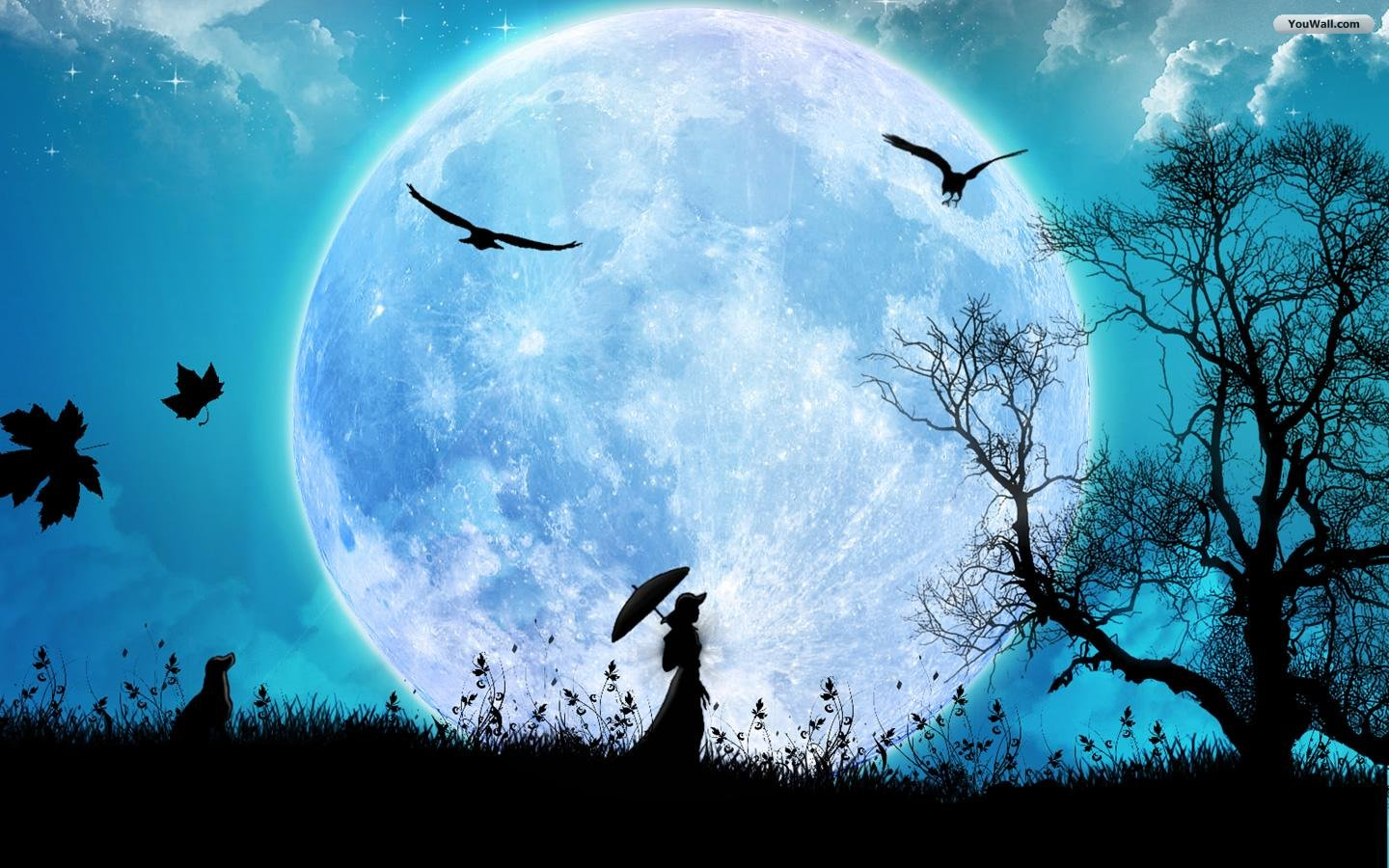 cool wallpapers full moon wallpapers