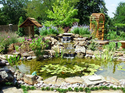 Landscape Design Ideas 5 Water Garden Landscaping Ideas