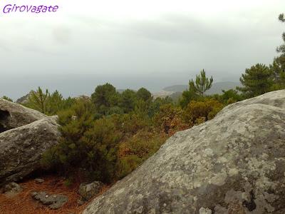 escursioni trekking isola Elba