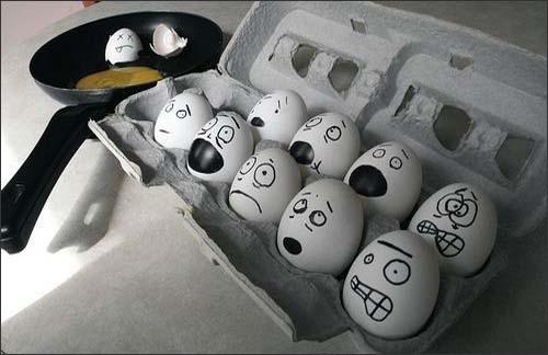 foto telur lucu