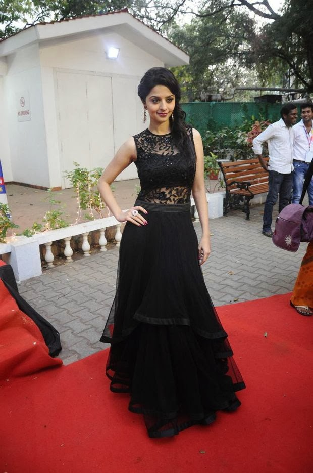Vedhika at 7th Edison Awards ceremony