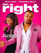 Mr Right (2015) [Vose]