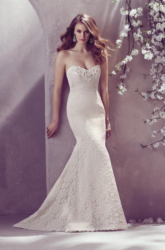 Nwl contemporary dresses paloma blanca mikaella bridal for 1800 style wedding dresses