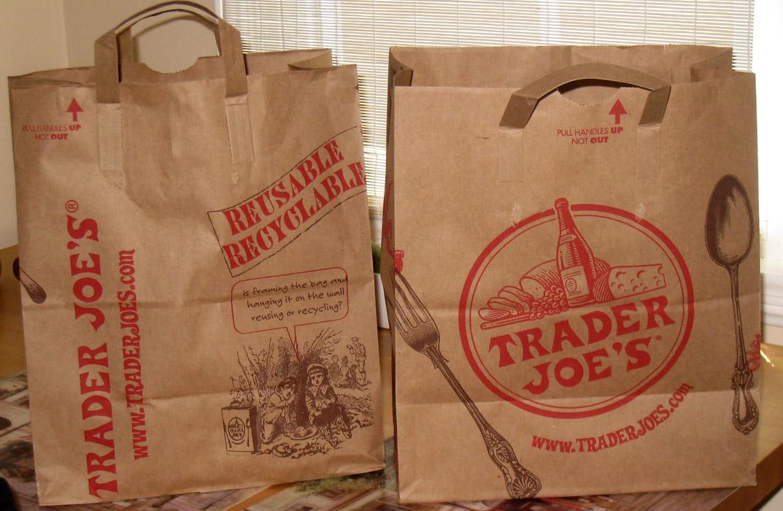 ban on plastic bags essays
