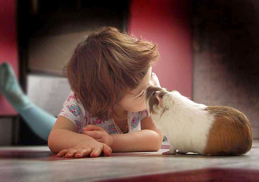 Cute Child with Pet