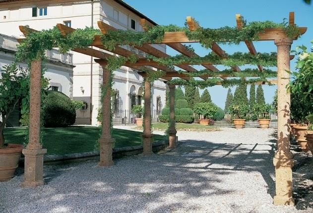 Arte y jardiner a plantas trepadoras en el jardin - Plantas trepadoras para pergolas ...