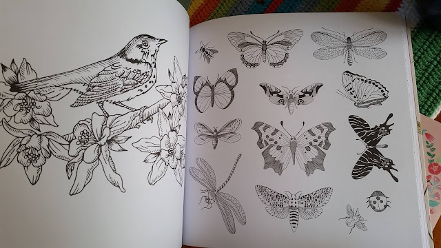 Pencils As I Often Colour In Little Hummingbird Drafts My Crochet Ideas Books To Help Me Decide On Colourways Now Have A Really Good Excuse
