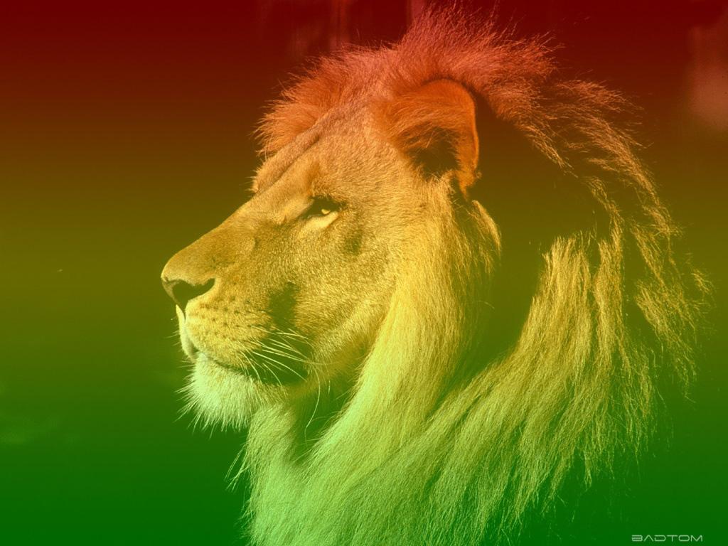imagens-imagens-do-reggae-6bd6ca.jpg