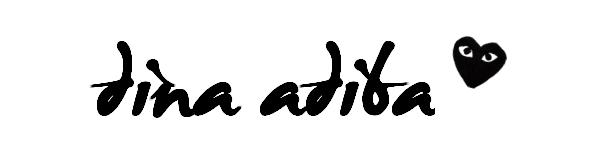 Dina Adiba's Blog