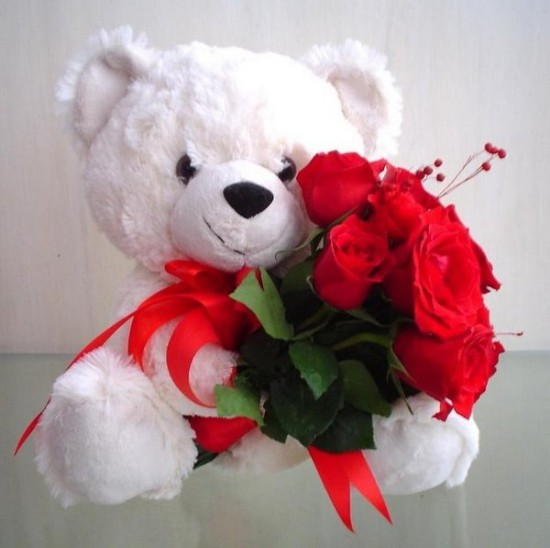 white teddy bear holding red roses