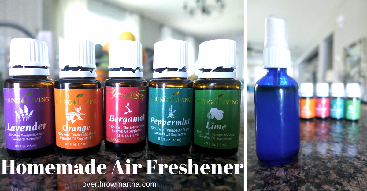 Easy homemade air freshener to remove odors and make your home, office or car smell AMAZING! #greencleaning