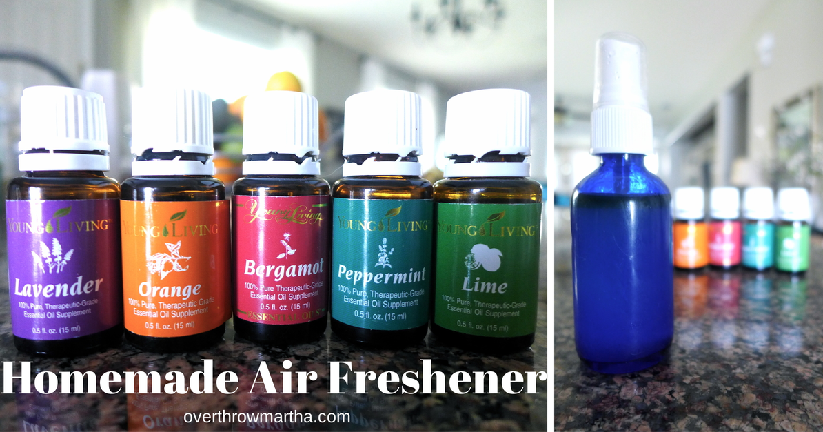 Homemade air freshener recipe overthrow martha - Homemade air fresheners ...