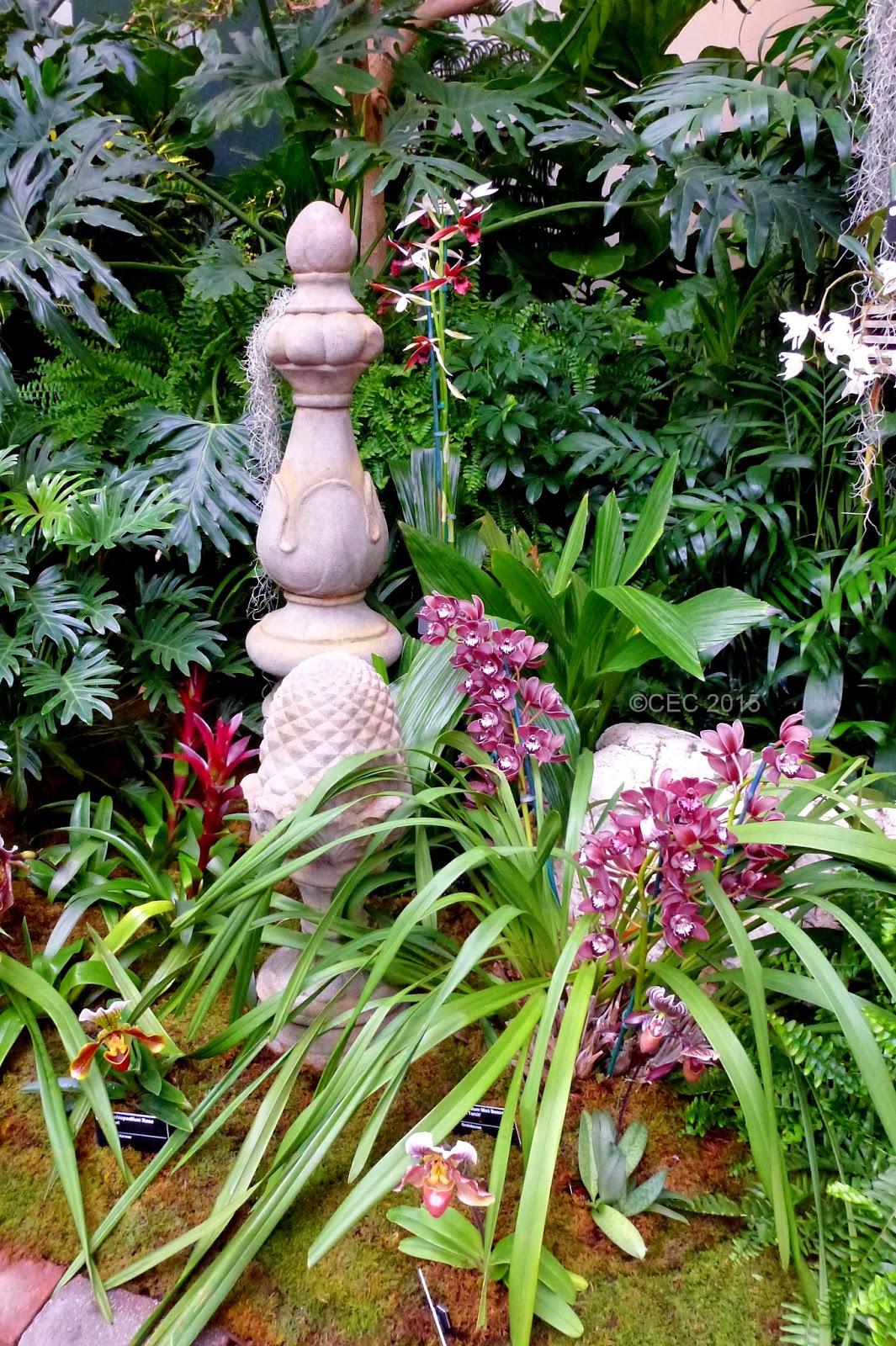 Gardener 39 s roost orchid show 2015 missouri botanical - Orchid show missouri botanical garden ...