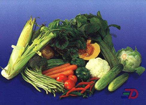Pengertian, Jenis, dan Faktor Penyebab Obesitas Beserta Resikonya