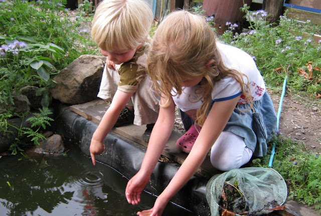 children pond dipping in wildlife pond