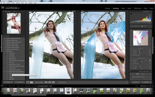 adobe photoshop lightroom 4 2 final multilingual