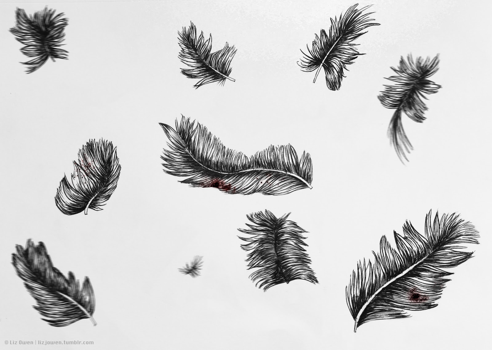 liz owen graphic design and illustration falling feathers