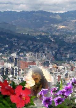 País de flores