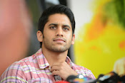 Naga Chaitanya photos-thumbnail-7