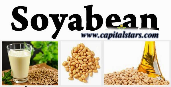 cs soyabean, Agri Commodity Tips, Free Agri Tips, free agri calls, Futures Trading Tips, intraday calls
