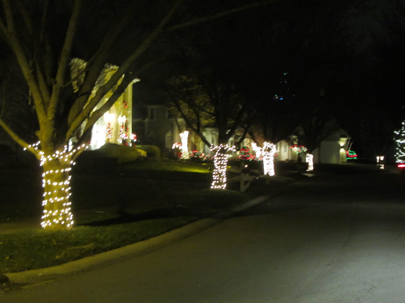 Night lights james dobson - They Had Lights Around The Bottom Of All The Trees That Lined The Sidewalks The Pictures Doesn T Do It Justice It Looked Like Something You Would See In A