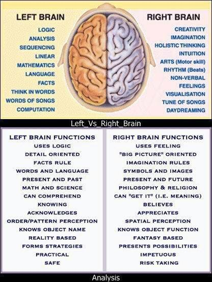 Right Brain Functions Right Brain Characteristics