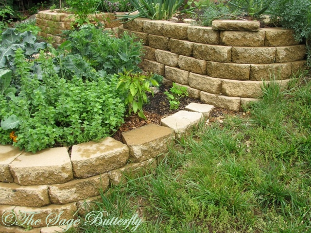 The sage butterfly how we built our tiered raised bed for Terrace vegetable garden