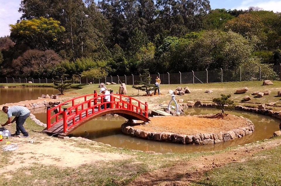 plantas jardim japones:pinheiro negro; ponte para jardim japones; jardim com lago
