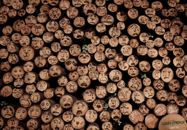 Di no a la deforestación