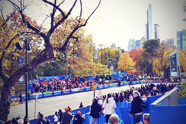 New York November 2013 Marathon Central Park