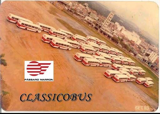 CLASSICOBUS