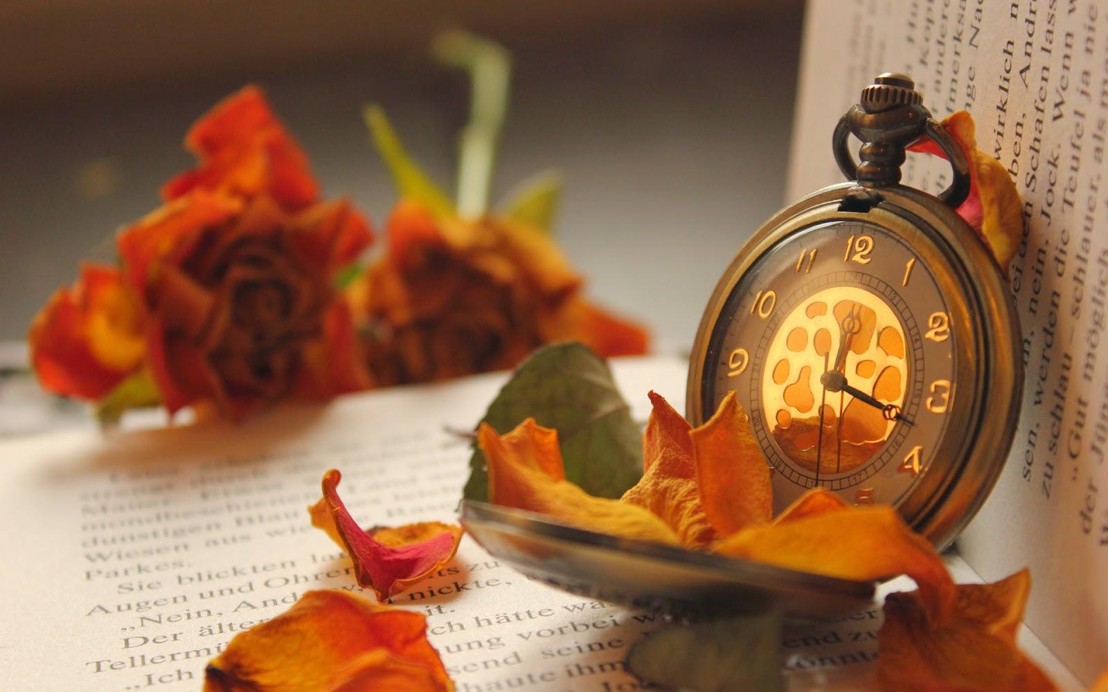 Beautiful Book Rose and Watch Wallpaper