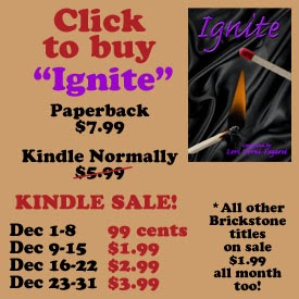 http://www.amazon.com/Ignite-Light-Your-Fire-Series-ebook/dp/B00GT1WH96/ref=cm_cr-mr-img