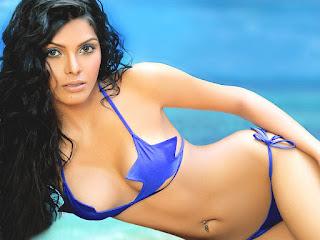 Sherlyn Chopra hot bikini pics