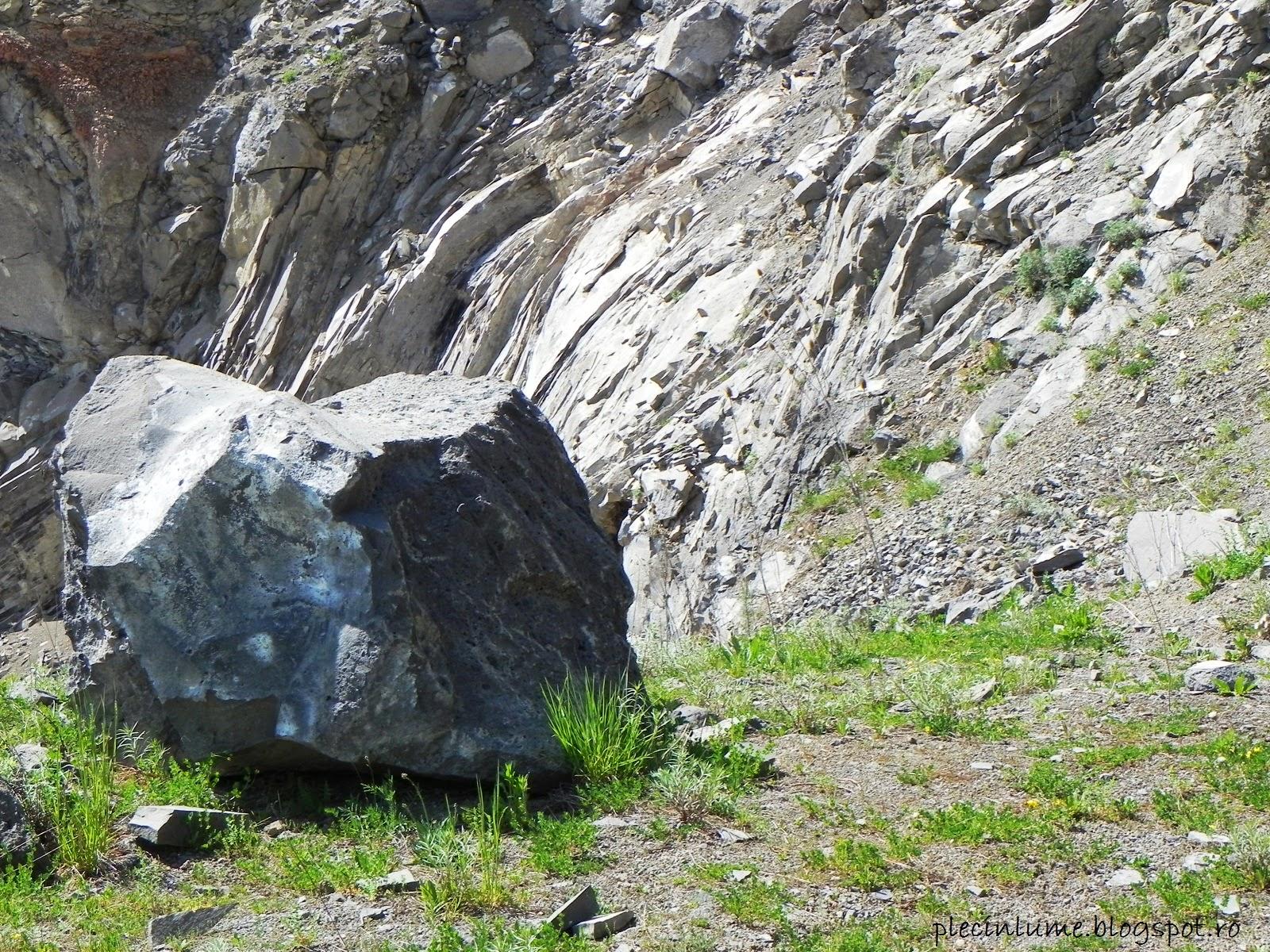Roci de bazalt in cariera